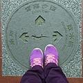 0304觀霧~雲霧步道 (50).jpg