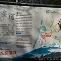 0304觀霧~雲霧步道 (54).jpg