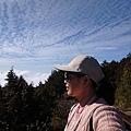 0304觀霧~雲霧步道 (65).jpg