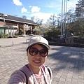 0304觀霧~雲霧步道 (75).jpg