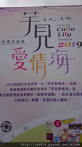 2019桃園~彩色海芋季10.jpg