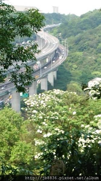 0424新林步道18.jpg