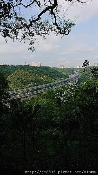 0424新林步道24.jpg