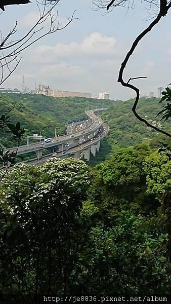 0424新林步道35.jpg