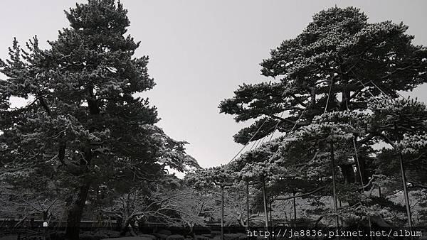 0201兼六園73相機版.jpg