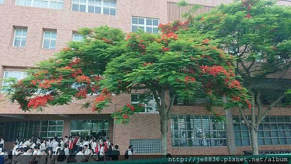 0603畢業典禮14.jpg