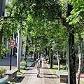 0831高雄三日遊9.jpg