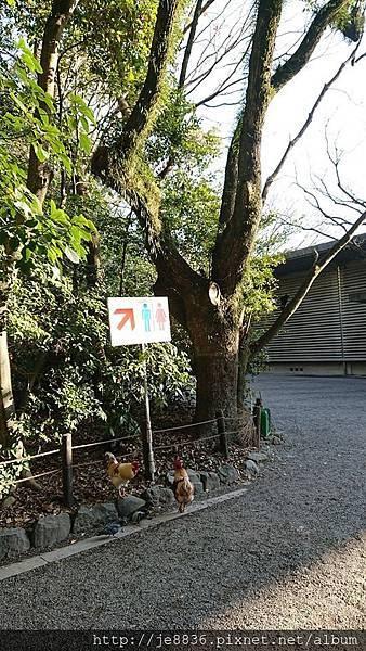 0203熱田神宮2.jpg