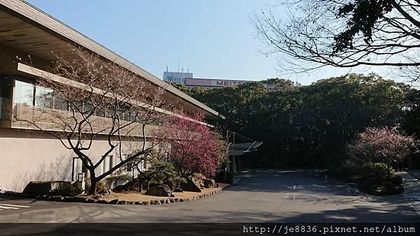 0203熱田神宮13.jpg