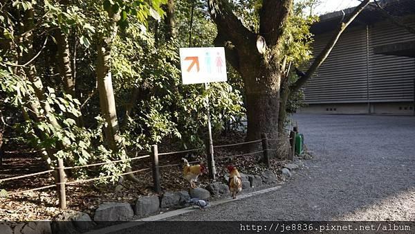 0203熱田神宮20.jpg