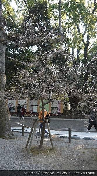 0203熱田神宮25.jpg