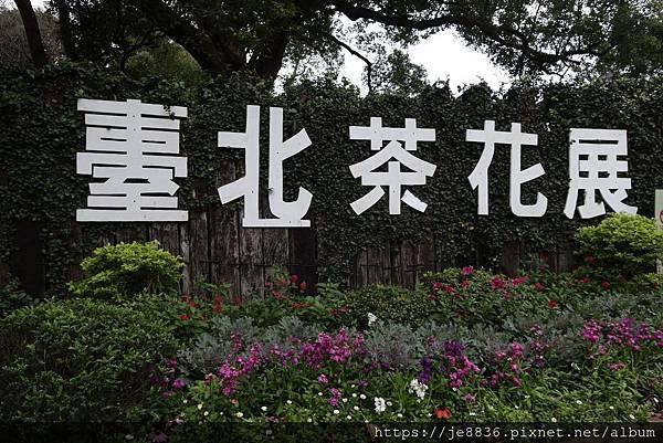 2019台北茶花展 (1).jpg