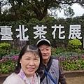 2019台北茶花展 (20).jpg