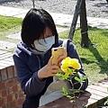 2020士林官邸鬱金香花展40.jpg