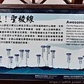 2010霧社櫻王17.jpg