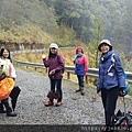 2010霧社櫻王43.jpg