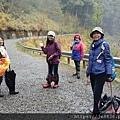 2010霧社櫻王42.jpg