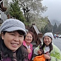 2010霧社櫻王61.jpg