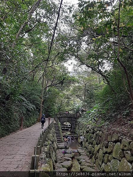 0405虎山步道7.jpg