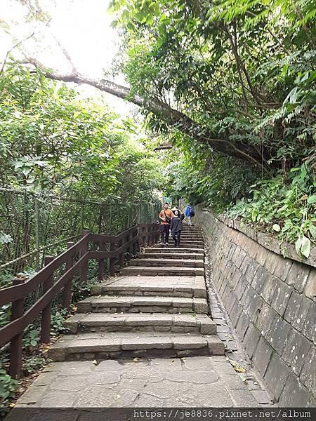 0405虎山步道20.jpg