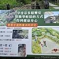 0409雅聞七里香5.jpg
