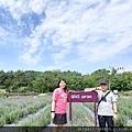 0409葛瑞絲香草田23.jpg