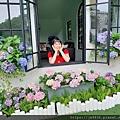 0521花露農場繡球花61.jpg
