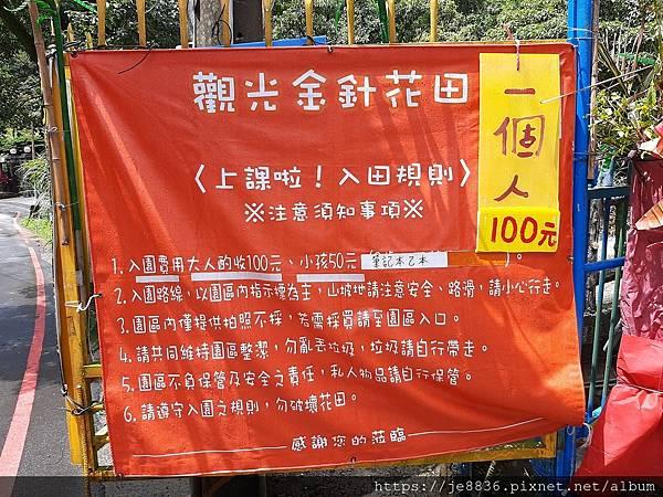 0931竹子湖27.jpg