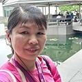 0709蘇州博物館17.jpg
