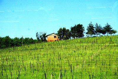 義大利佛羅倫...t公路景觀