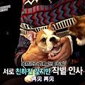 [DLKOO.com][TSKS][Showtime burning the beast][E02_20140508][1080P][KO_CN]_2014592272.JPG