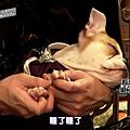 [DLKOO.com][TSKS][Showtime burning the beast][E02_20140508][1080P][KO_CN]_201459215310.JPG