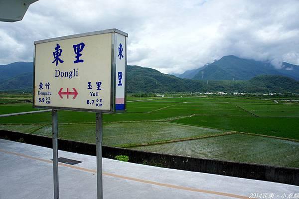 DSC00174.jpg