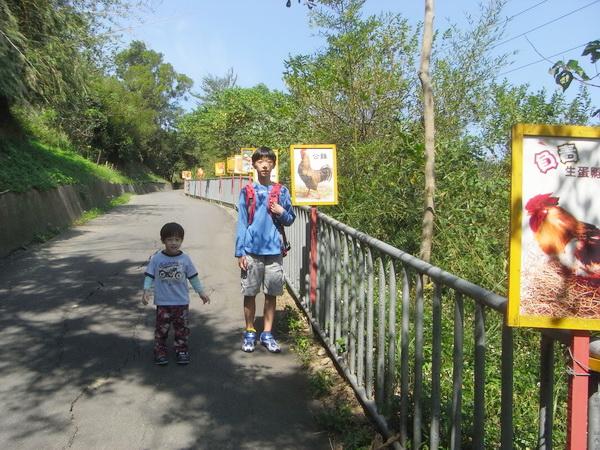 <新竹東峰金雞蛋農場2011/10/22>