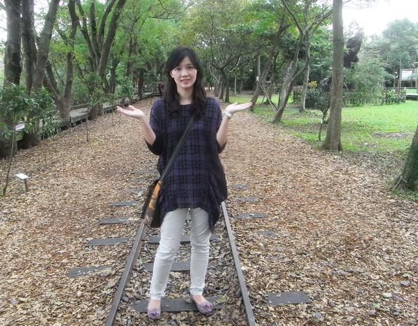 <羅東林業文化園區2011/11/19>