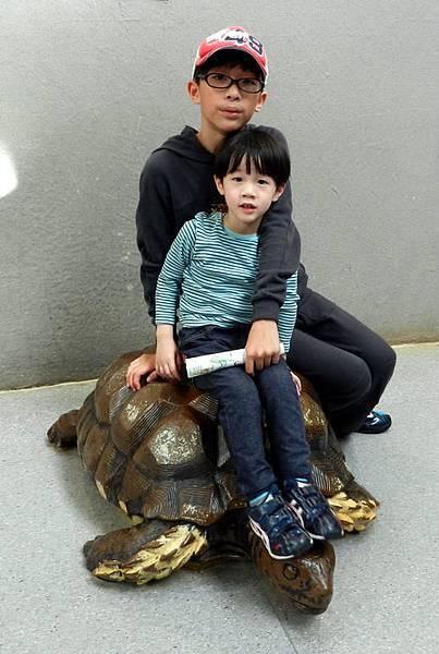 <台北市立動物園2012/12/29>