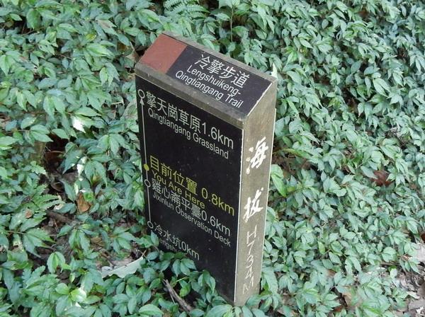 DSCN7633.jpg
