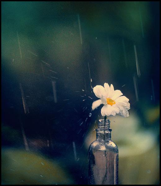 like_a_sad_song___by_TOYIB.jpg