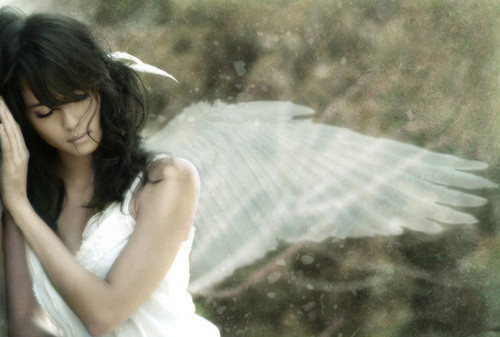 lovely,angel,bird,crane,wing,alone-5426b9bda1521d3be040edf9a12f779e_h.jpg