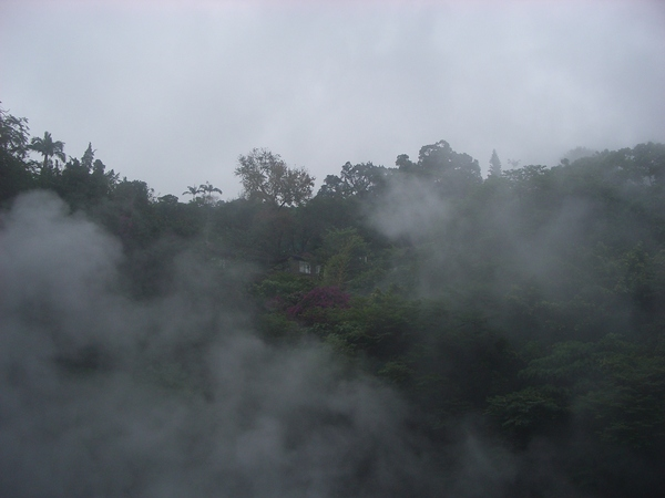 地熱谷蒸氣煙霧瀰漫的景色