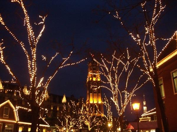 夜晚美麗的樹燈