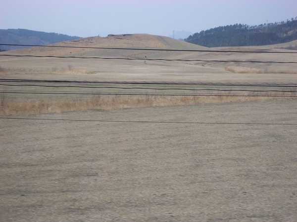 一片乾枯的草原