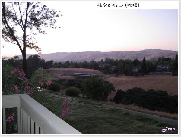 陽台外的後山 (牧場)