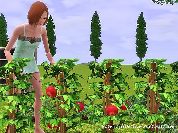 Screenshot-224.jpg