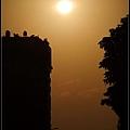 夕陽、城市、樹2