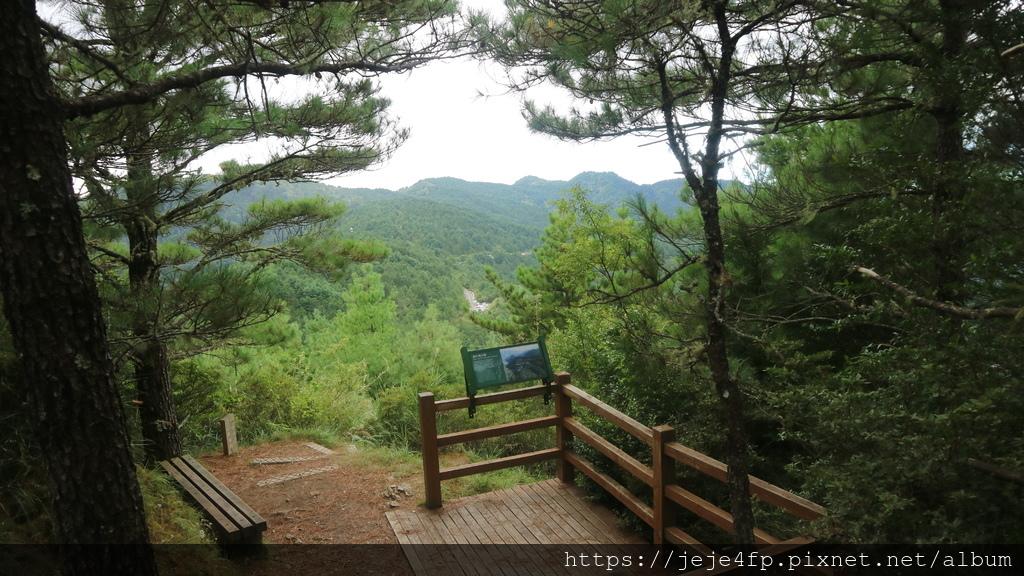 20171009 (113) 東埔山步道 [0.4km處(第1觀景台)].JPG