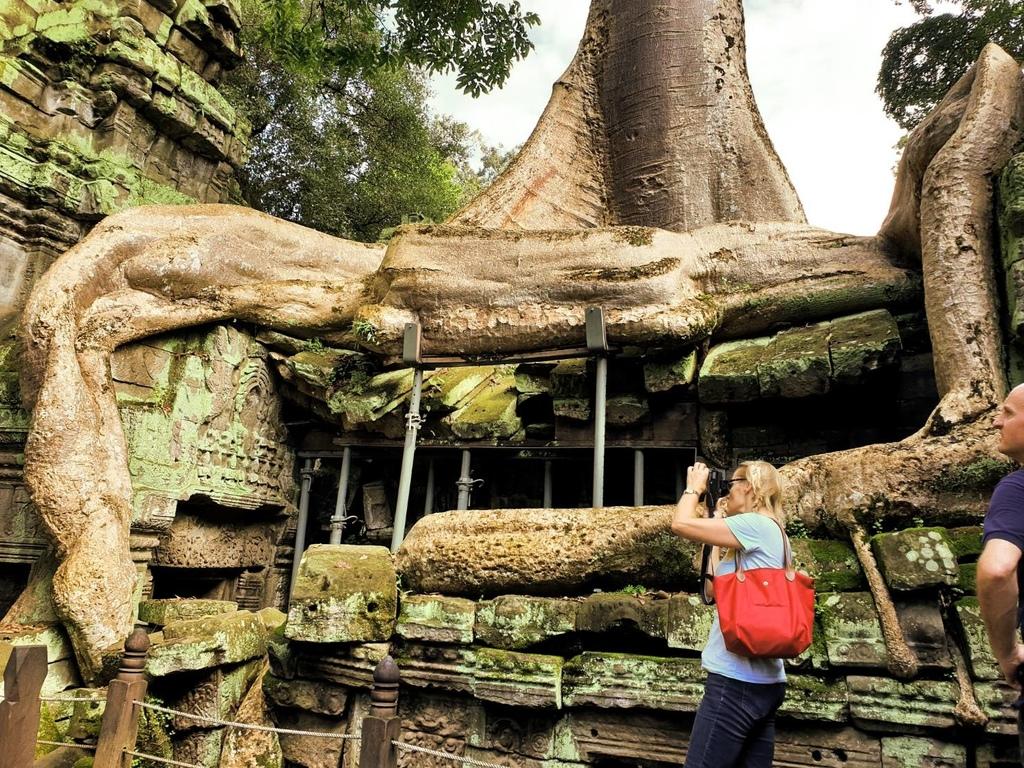20180911 (84) 巨大的板根樹(Kapok) [塔普倫寺 (Ta Prohm)].jpg