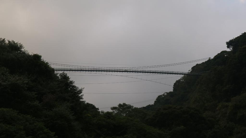 20171007 (205) 由東埔一鄰仰望東埔吊橋.JPG