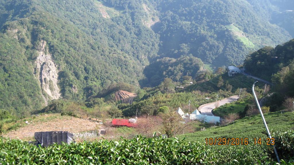 20161029 (61) 台14公路92.5km處 [眺望盧山部落附近山坡的茶園].JPG