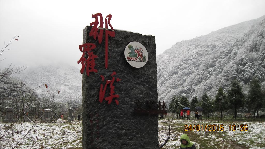 20160124 (11) 竹60道路6.2Km處 [那羅文學林 (海拔~500m)].JPG